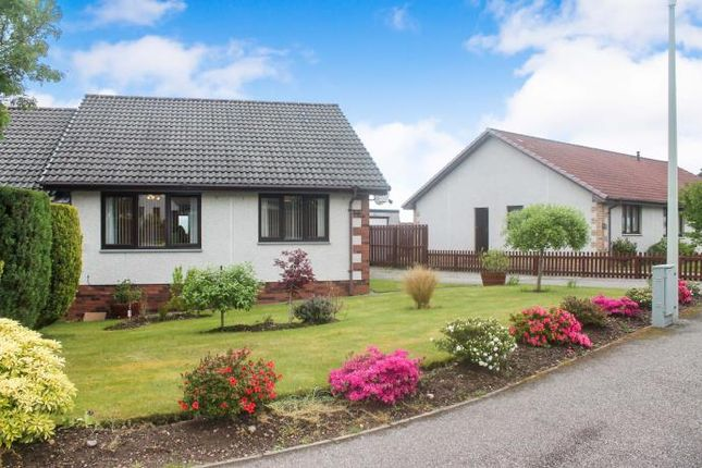 Thumbnail Semi-detached house to rent in Castlehill Gardens, Inverness