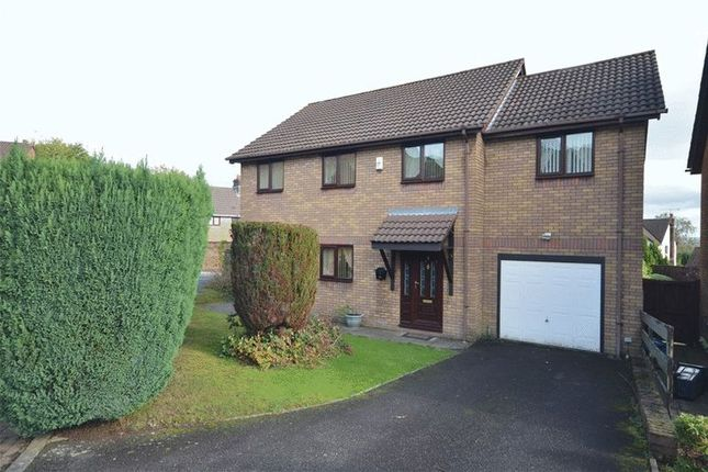 Thumbnail Detached house to rent in Primrose Court, Ty Canol, Cwmbran