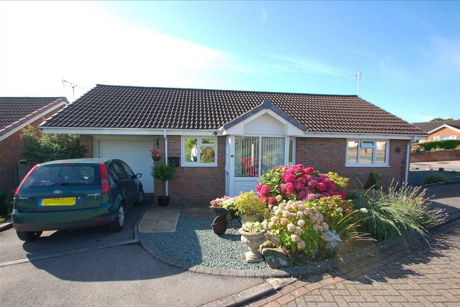 Thumbnail Detached bungalow for sale in Seymour Close, Berry Hill, Coleford