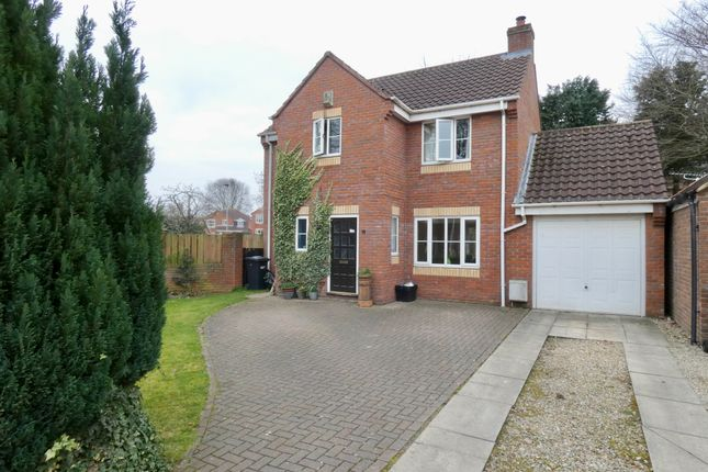 Thumbnail Detached house for sale in St. James Meadow, Boroughbridge, York