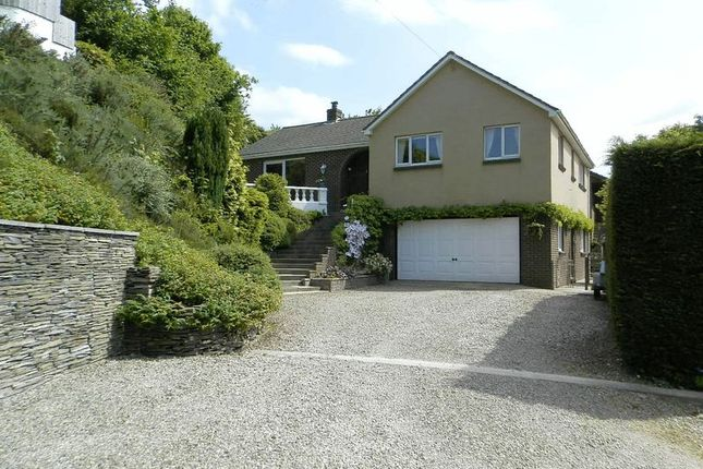 Thumbnail Detached bungalow for sale in Lady Road, Llechryd, Cardigan