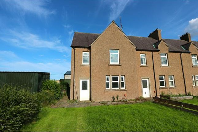Thumbnail End terrace house to rent in Coldingham, Eyemouth