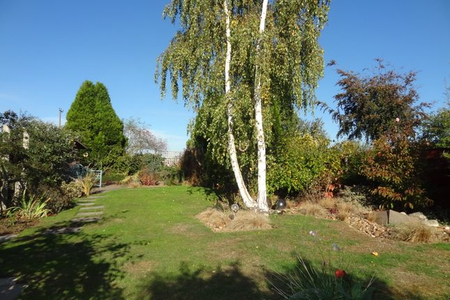 Thumbnail Detached bungalow for sale in Croxall Road, Edingale, Tamworth