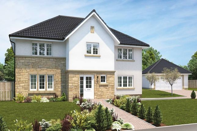 "Thumbnail Detached house for sale in ""The Elliott"" at Hillview Gardens, Nivensknowe Park, Loanhead"