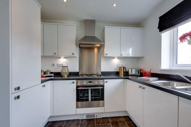 """Thumbnail Detached house for sale in """"The Cromarty"""" at Dunrobin Road, Airdrie"""