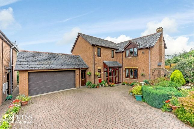 Thumbnail Detached house for sale in Bramble Close, Newtown, Powys