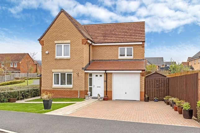 Thumbnail Detached house for sale in Kittlegairy View, Peebles