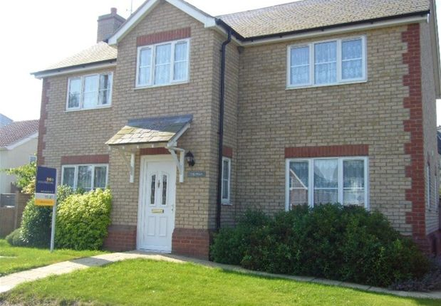 Thumbnail Detached house to rent in The Green, West Row, Bury St. Edmunds
