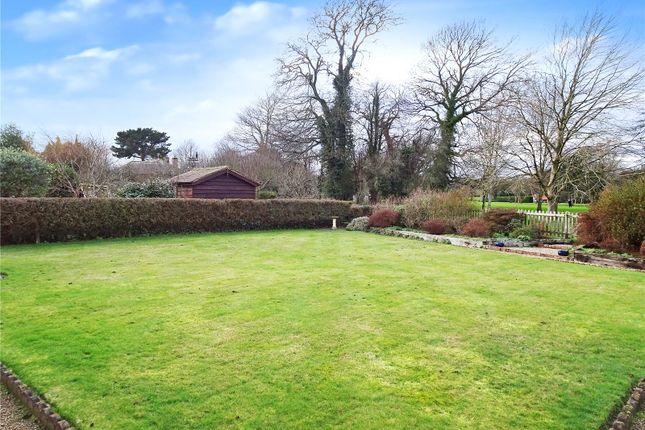 Garden of Ham Manor, Angmering, West Sussex BN16