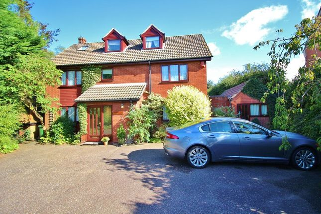 Thumbnail Detached house for sale in Norwich Road, Horstead, Norwich