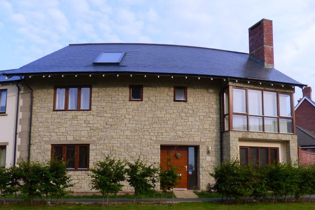 Thumbnail Semi-detached house to rent in East Green, Shaftesbury