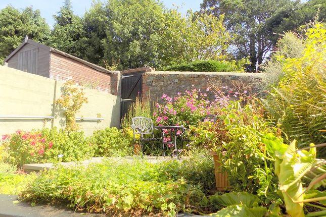 Another Rear Garden Photo