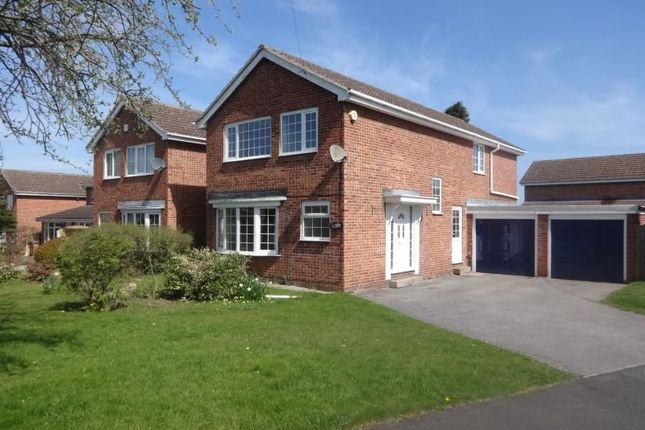 Thumbnail Detached house to rent in Linnet Grove, Wakefield