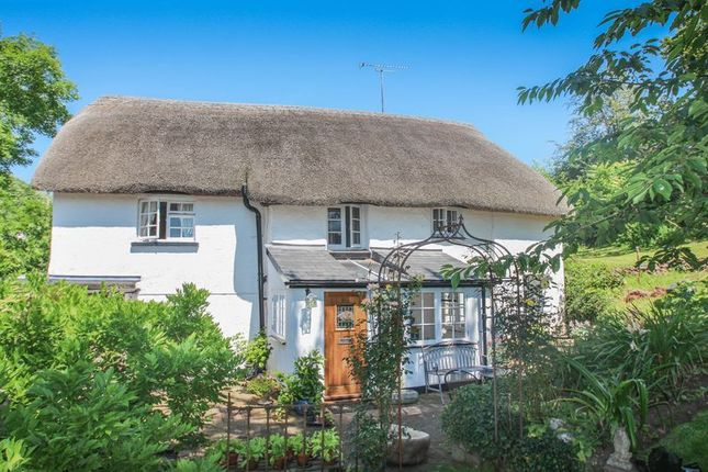 Thumbnail Cottage for sale in Sandford, Crediton
