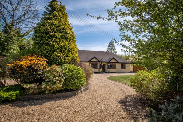 Thumbnail Bungalow for sale in Barkers Lane, Wythall, West Midlands