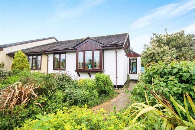 Thumbnail Terraced bungalow for sale in Heywood Close, Hartland, Bideford