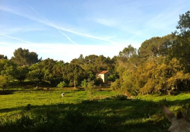 Country house for sale in Fréjus, Côte D'azur, Var, 83600
