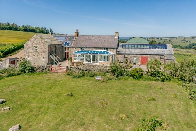 Thumbnail Detached house for sale in Allendale, Hexham, Northumberland