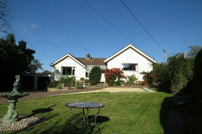 Thumbnail Detached bungalow for sale in Hill Road, Sandford, Winscombe