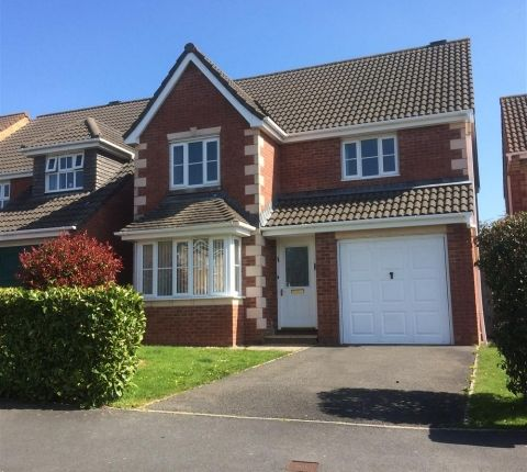 Thumbnail Detached house to rent in Westcott Meadow, Barnstaple