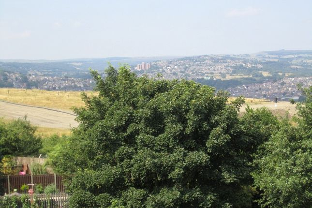 Rear Scenic Views