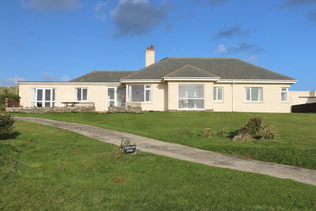 Thumbnail Detached bungalow for sale in Mawgan Porth, Mawgan Porth