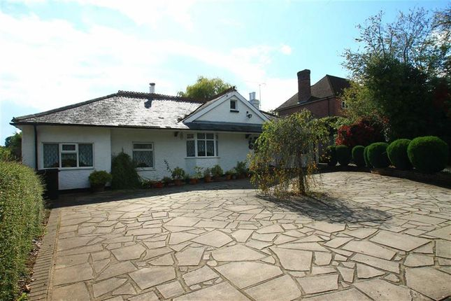 Thumbnail Detached bungalow for sale in Westfield Lane, St Leonards-On-Sea, East Sussex