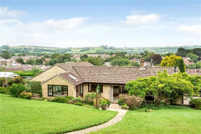 3 bed bungalow for sale in Culverhayes, Beaminster DT8