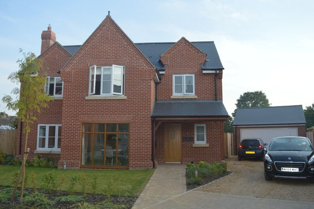 Thumbnail Detached house to rent in Braiswick Lane, Colchester