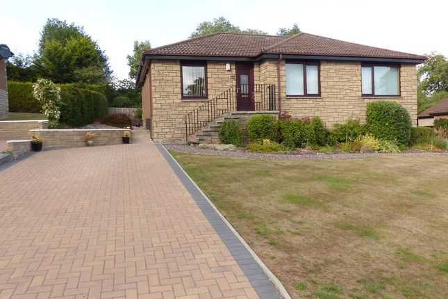 Thumbnail Bungalow to rent in Abbey Park, Auchterarder