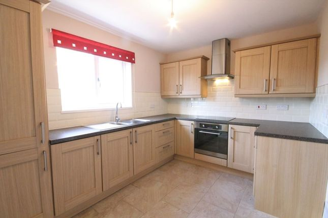 Thumbnail Terraced house to rent in Stanhope, Washington