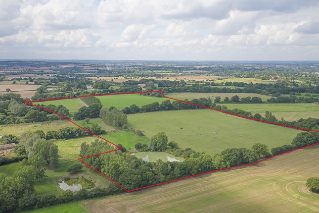 Thumbnail Land for sale in Chelmsford Road, East Hanningfield, Chelmsford