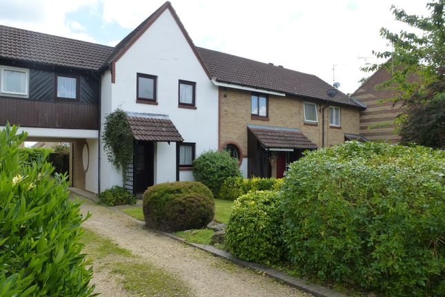 Thumbnail Terraced house to rent in New Park, March, Cambs