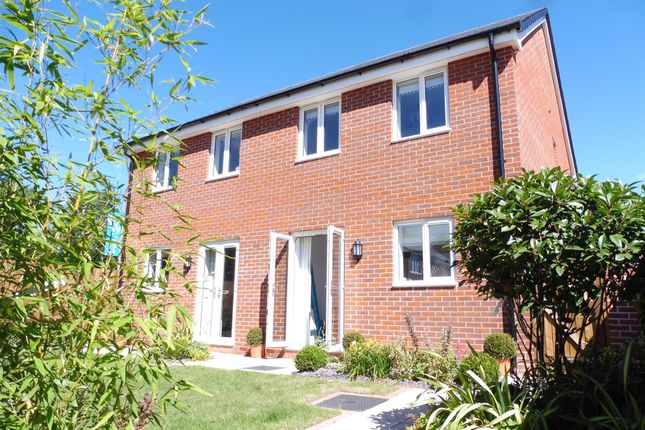 Thumbnail Semi-detached house for sale in Booth Lane South, Abington, Northampton