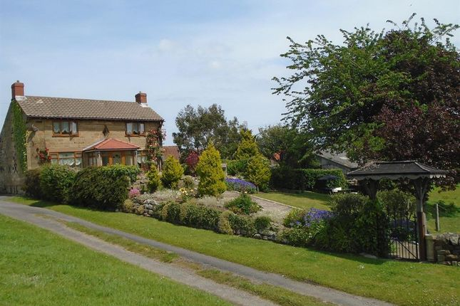 Thumbnail Equestrian property for sale in South End, Burniston, Scarborough