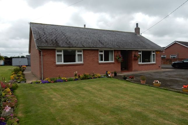 Thumbnail Detached bungalow for sale in Little Bampton, Wigton