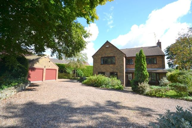 Thumbnail Detached house for sale in Draughton Road, Maidwell, Northampton