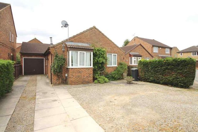 Thumbnail Detached bungalow to rent in Andrew Drive, Huntington, York