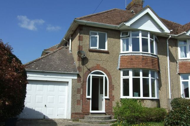 Thumbnail Semi-detached house to rent in South Court Avenue, Dorchester