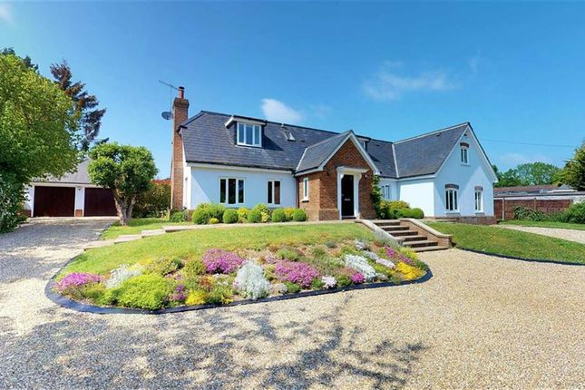 Thumbnail Detached house for sale in Reynards Road, Welwyn, Welwyn