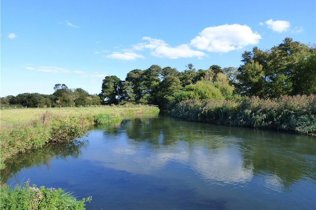 Thumbnail Land for sale in West Holme Fishery, Wareham