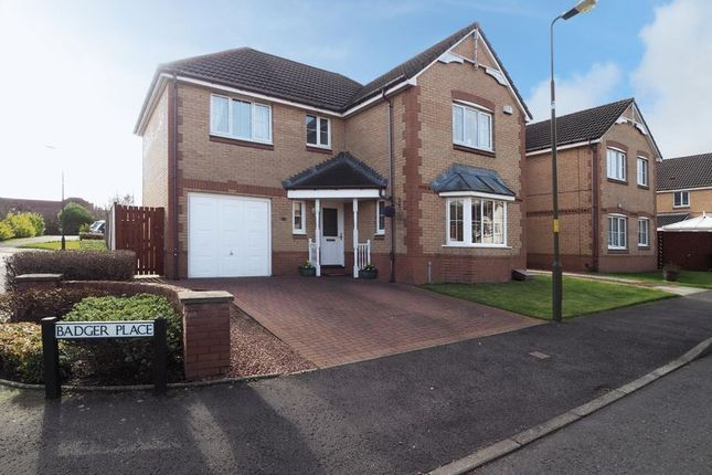 Thumbnail Detached house for sale in Badger Place, Broxburn