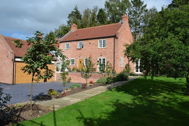 Thumbnail Detached house for sale in Church Street, South Leverton, Retford