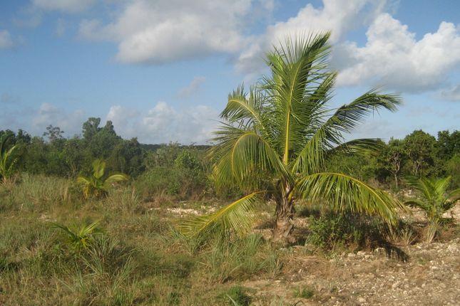 Land for sale in Wemyss Bight, Eleuthera, The Bahamas