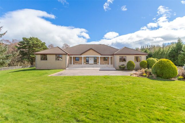 Thumbnail Detached house for sale in Upper Myrtlefield, Inverness