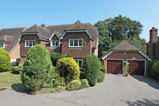 Thumbnail Detached house for sale in High Street, Maresfield, Uckfield