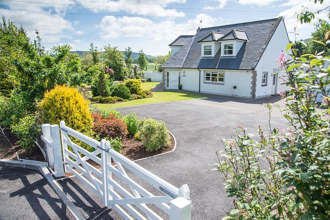 Thumbnail Detached house for sale in Drumfern, Killywhan, Beeswing, Dumfries