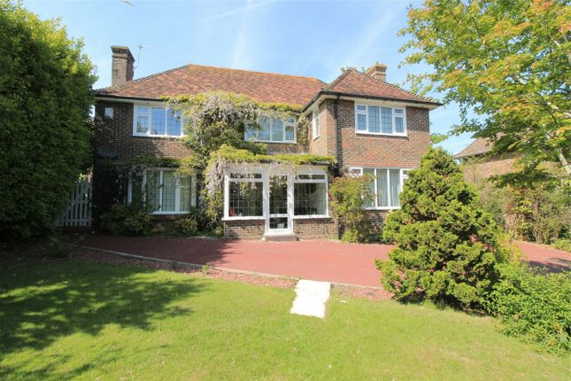 Thumbnail Detached house for sale in Little Common Road, Bexhill On Sea, East Sussex