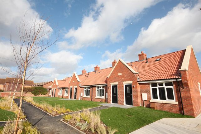 Thumbnail Bungalow for sale in Ernest Luff Court, Luff Way, Walton-On-The-Naze