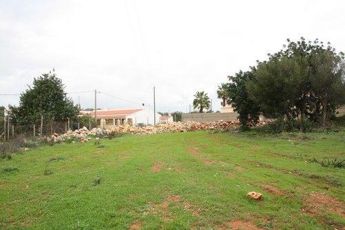 Image of Areeiro, Near Almancil, Algarve, Almancil, Loulé, Central Algarve, Portugal